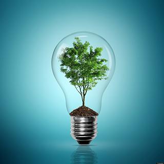 2017印度再生能源兩年併網目標